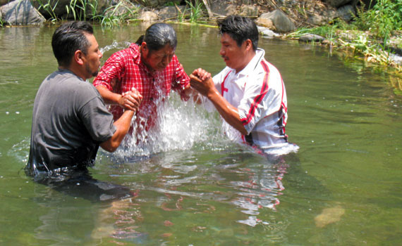 nmf-baptism