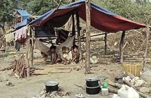 disaster-shanty