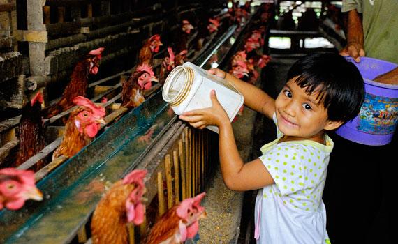 girl-chicken-570