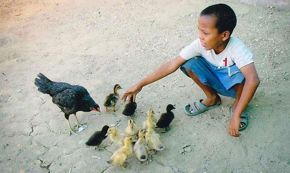 Myanmar Orphanage - YouTube