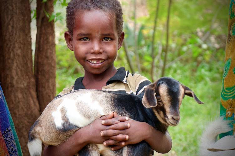 Ethiopian child holding kid goat