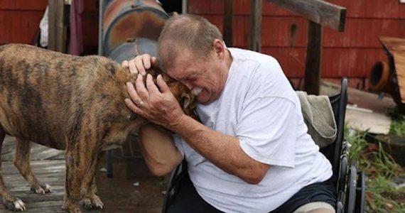 man weeping with dog after devastation of hurricane harvey