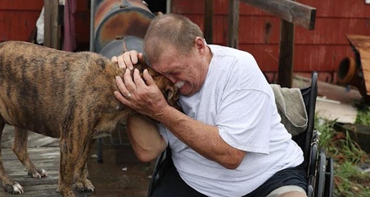 man weeping with dog after devastation of hurricane harvey