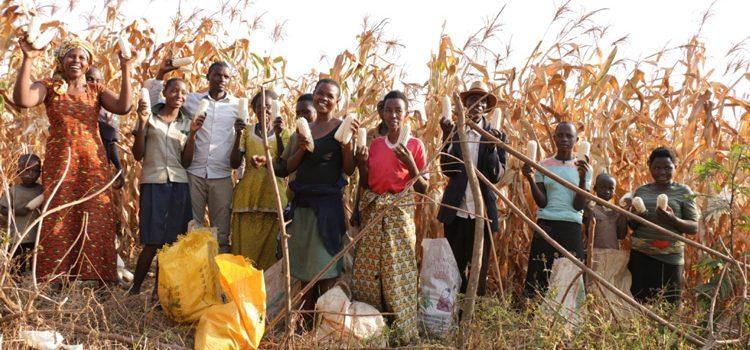 Farming God's Way farmers celebrating harvest