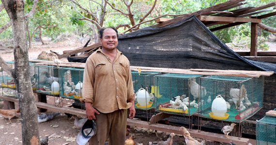 Picture of micro-borrower with chicken business