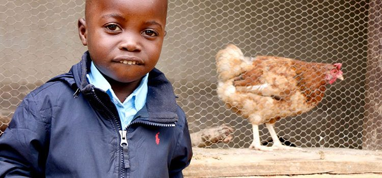 Picture of deaf child in Zimbabwe next to chicken project